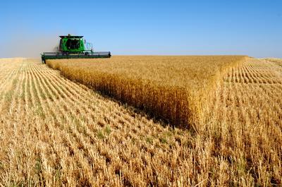 Cerca de 680.000 productores podrán presentar la solicitud única de ayudas directas de la PAC para 2021
