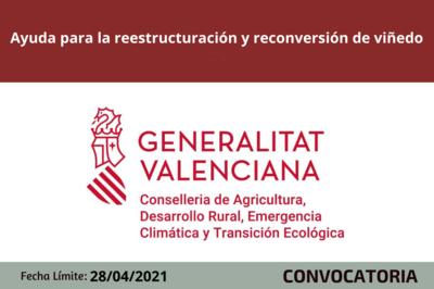 Ayuda para la reestructuración y reconversión de viñedo